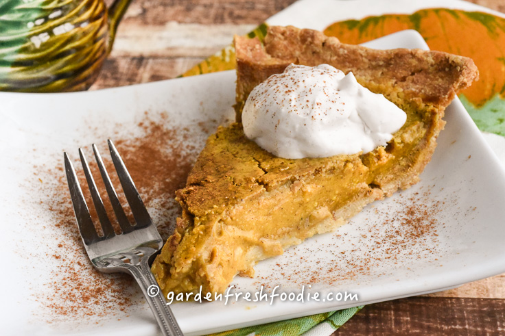 Slice of Vegan Maple Pumpkin Pie With Coconut Whipped Cream