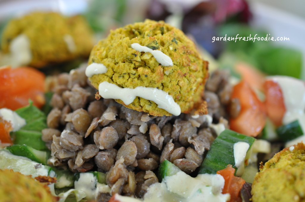 Gluten Free Falafel and Lentils On Top of A Fresh Salad
