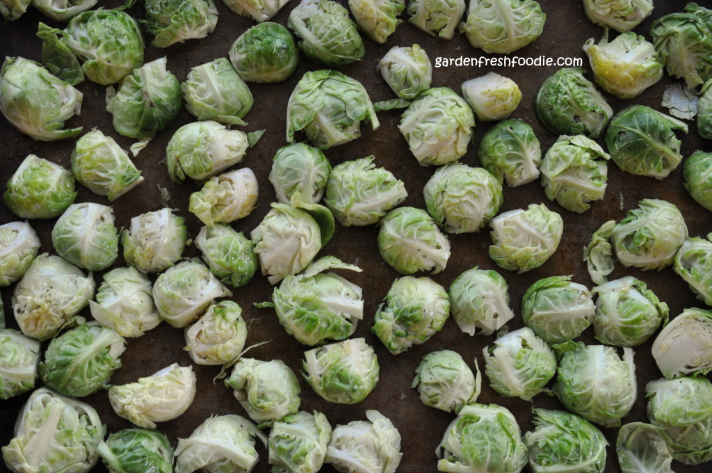 Brussels Sprouts Getting Ready To Be Roasted