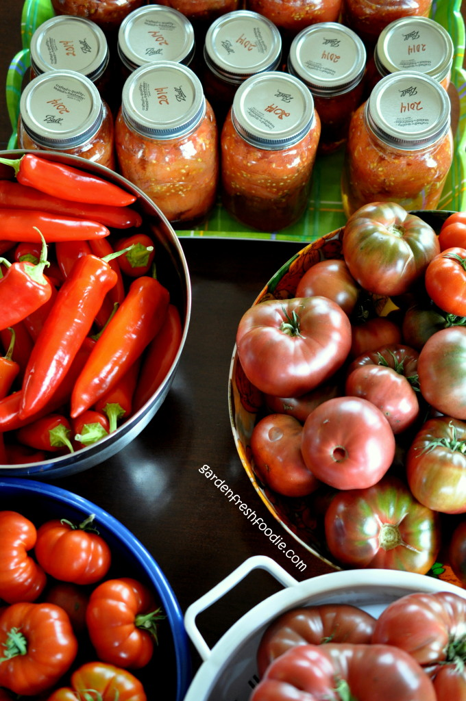 Preserving The Tomato Harvest
