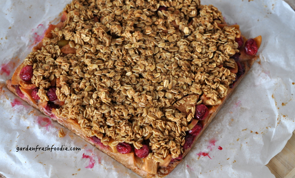 Baked Apple Cranberry Bars