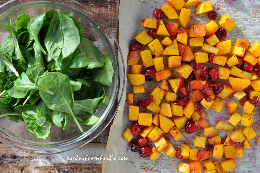 Butternut Squash, Cranberries, and Spinach