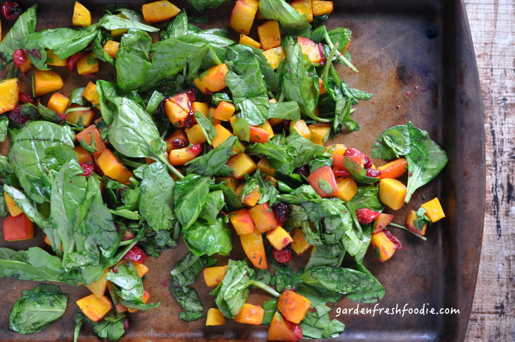 Roasted Butternut Squash, Cranberries, and Spinach