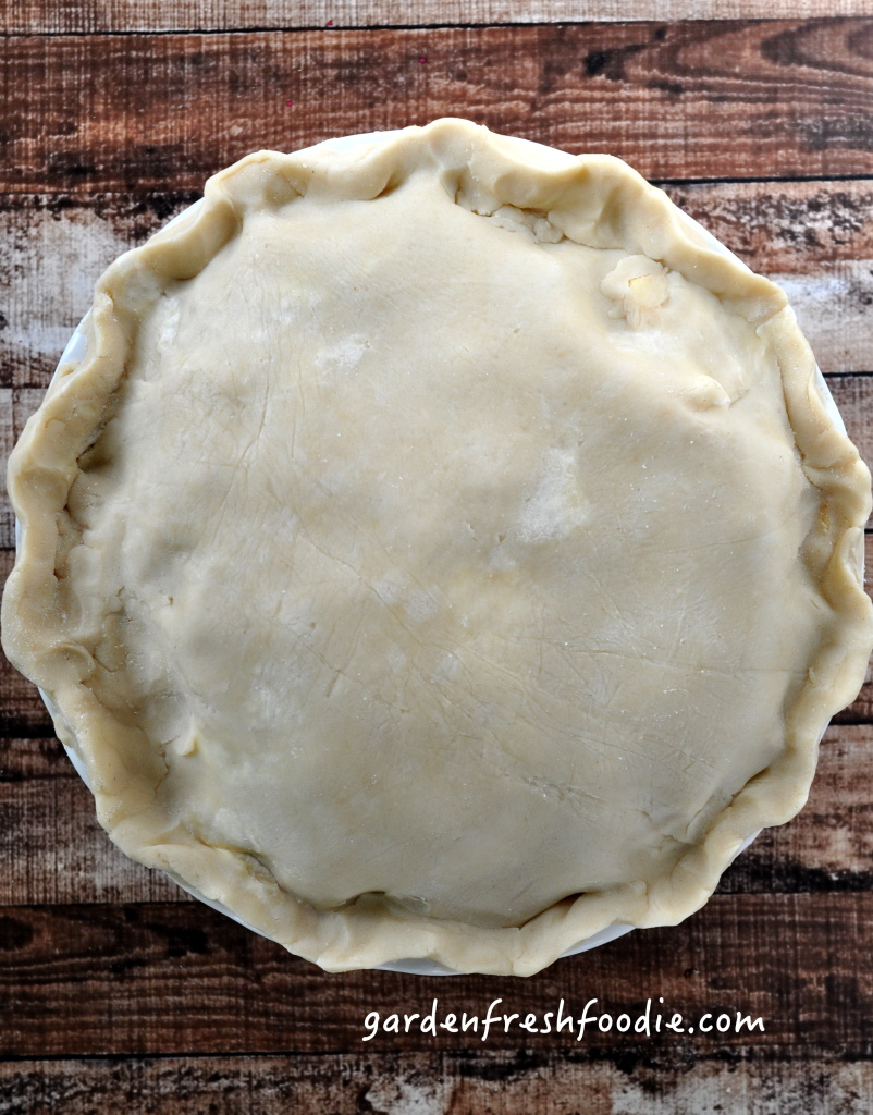 Gluten Free Apple Pie Filled