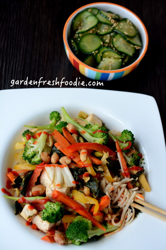 Gluten Free Soba Noodles Topped With Ginger Tofu Stir Fry and a Marinated Cucumber Salad