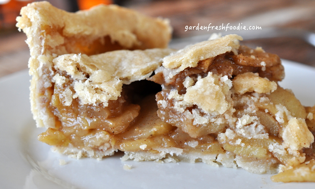 Slice of Gluten Free Apple Pie