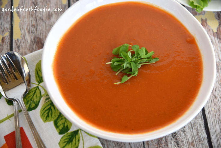 Bowl of Creamy Moroccan Carrot Soup