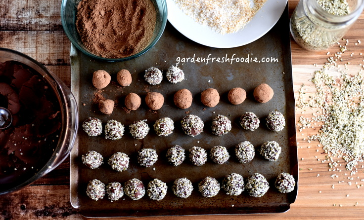 Dark Chocolate Truffles With Hemp Seed, Cacao, and Coconut