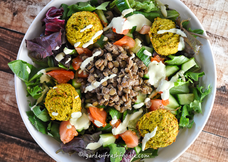 Falafel Salad Topped With Lentils and Tahini