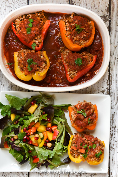 Italian Stuffed Peppers With Rice and Lentils