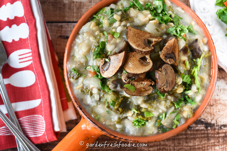 Big Bowl of Mock Mushroom Barley Soup