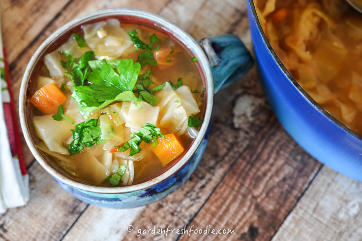 Bowl of Cabbage Soup