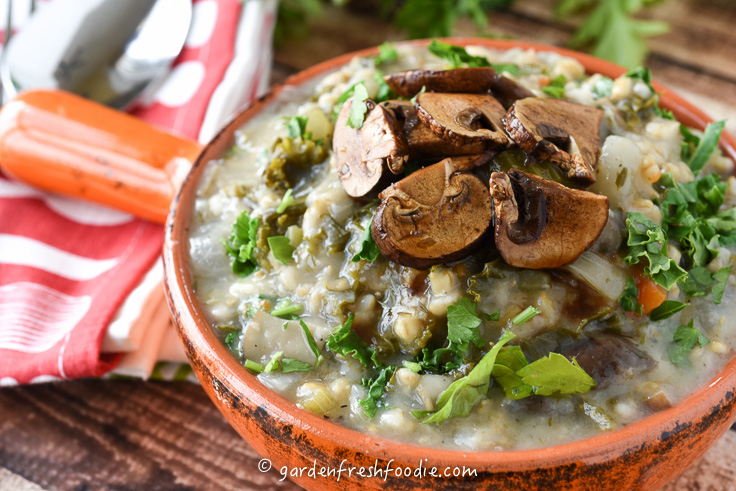 Bowl of Mock Mushroom Barley Soup