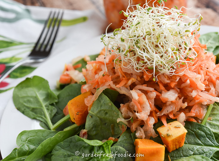 Ginger Carrot Kimchi With Fresh Alfalfa Sprouts