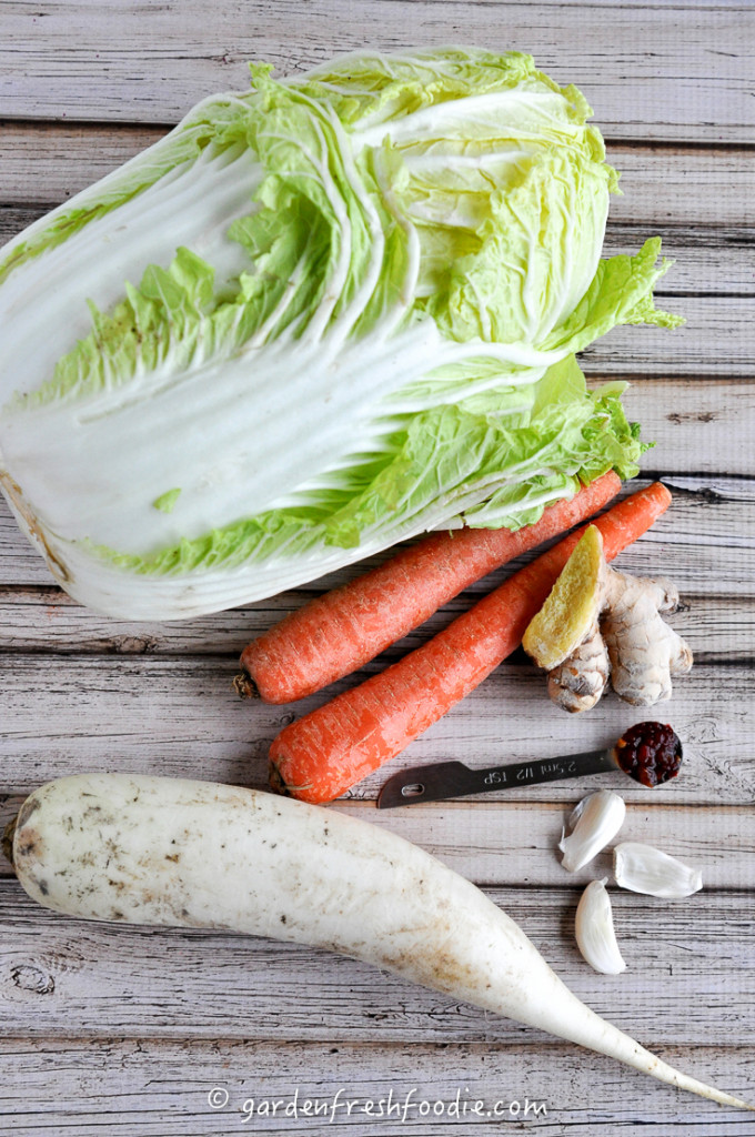 Ginger Kimchi Ingredients With Carrot &Daikon