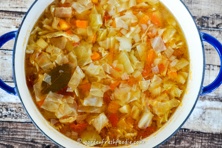 Making Cabbage Soup