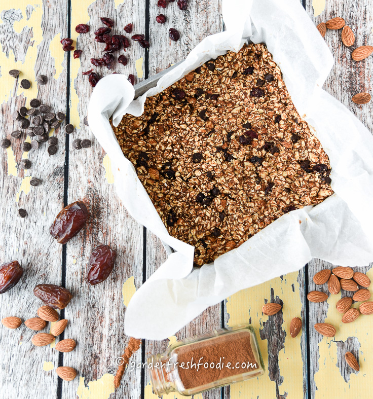 Raw Crantastic Chewy Granola Bars