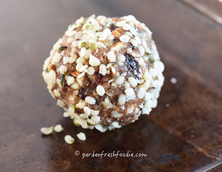 Raw Hemp Seed Coated Date Nut Bites