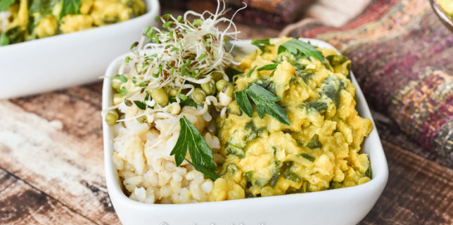 Indian Cauliflower Red Lentil Stew WIth Brown Rice and Sprouts