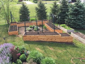 Raised Beds & Early Spring Garden