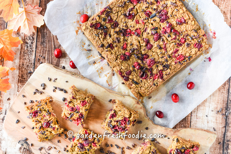 Pumpkin Oatmeal Cranberry Breakfast Bars