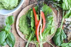 Garlic Scape White Bean Dip Wrap