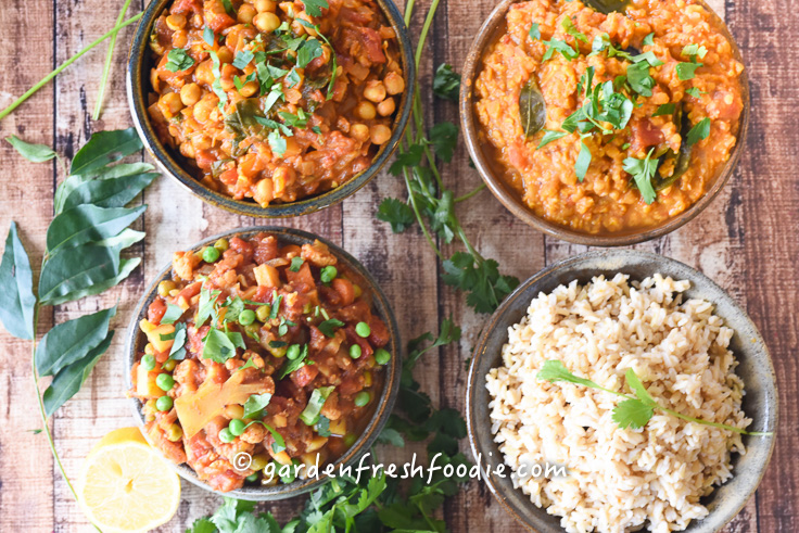 Vegan Indian Feast