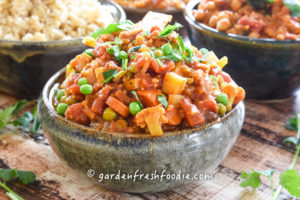 Winter Vegetable Vindaloo