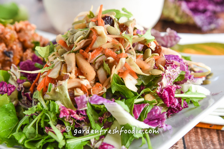 Oil Free Apple Slaw