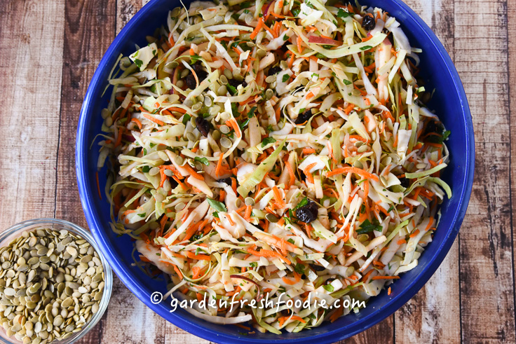 Oil Free Apple Slaw Mixed